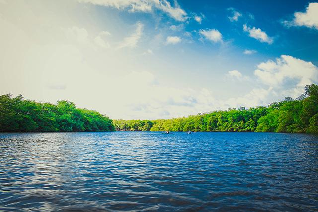 歩いている川の水が澄んでいる場合の意味メッセージ深層心理