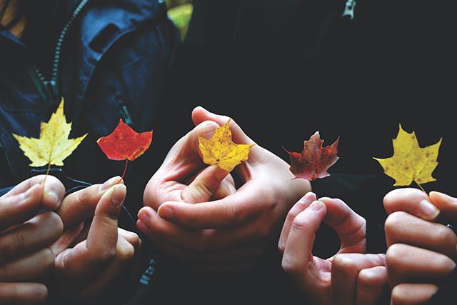 秋の夢を見て楽しいと思えた場合の夢の意味