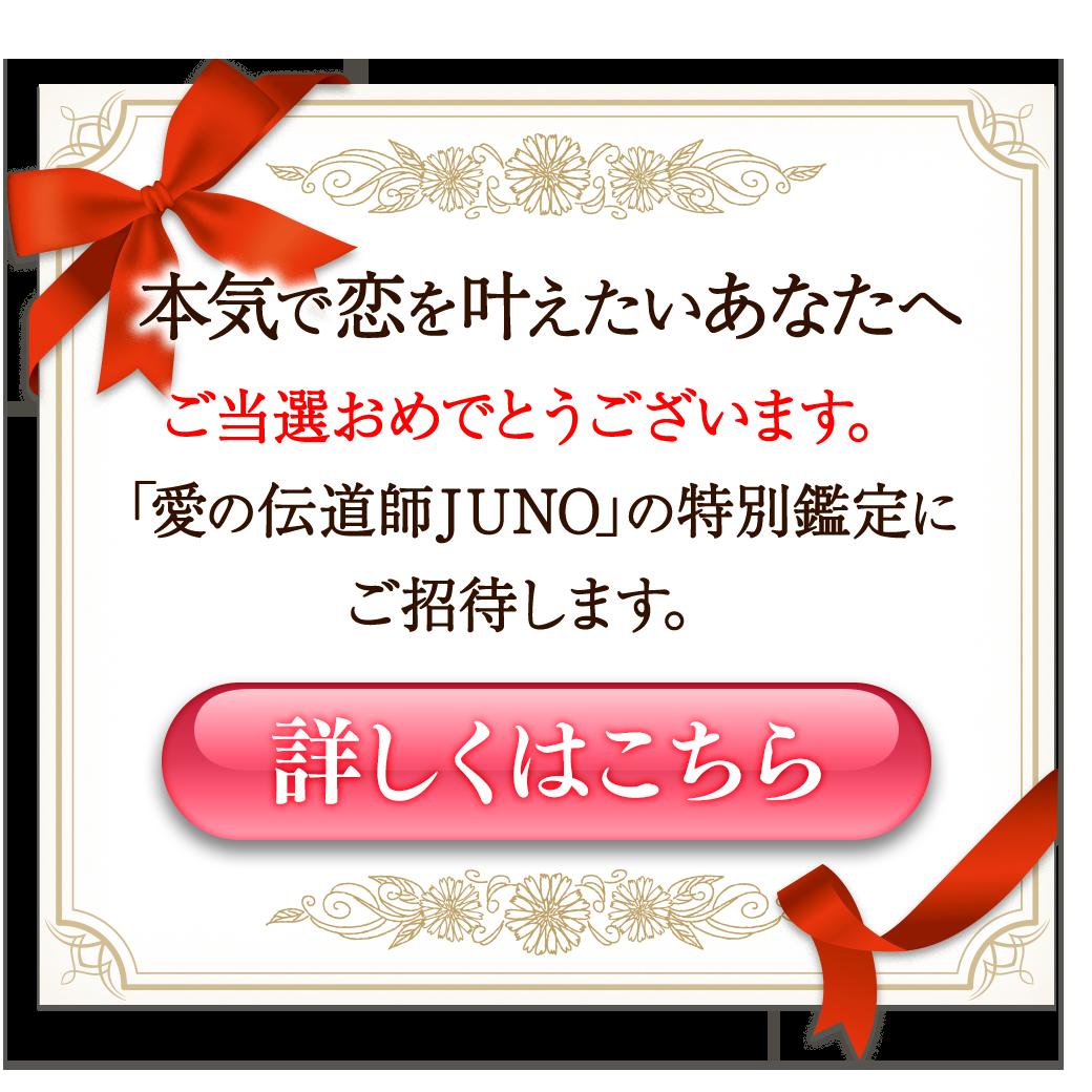 占い師JUNO 特別鑑定