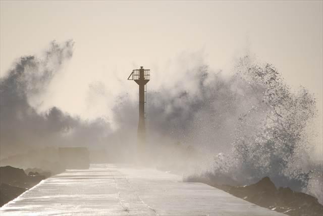 台風の夢とは全体的にどのような意味を持つのか
