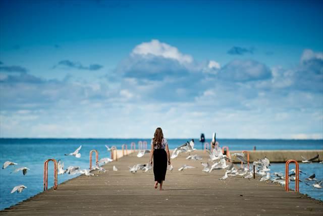 鳥になる夢の意味